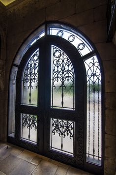 Emmanuel Design Group Country Mansion Iron and Glass Front Doors