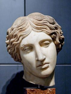 Head of a Wounded Amazon of the Capitol-Sosikles type. Greek marble, Roman copy after the bronze original created for the 440-430 BC artistic contest of Ephesus. Original Attributed to Polykleitos or Kresilas ?. Palazzo dei Conservatori, Rome.