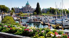 15 Things to Do in Victoria, British Columbia, Canada - Styled to Sparkle Victoria Vancouver Island, Vancouver British Columbia, Victoria Island Canada, Victoria British Columbia, University Of British Columbia, Au Pair, Vancouver Wallpaper, West Coast Tattoo, University Of Victoria