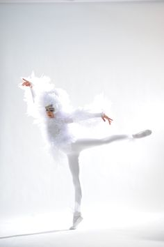 White owl costume by Classically Costumed Animal Costumes, Dance Company, Owl, Classic, Animals, Tutus, Skirts, Ballet, Derby