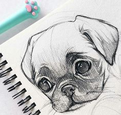 40 Free & Easy Animal Sketch Drawing Information & Ideas - Drawing . 40 Free & Easy Animal Information & Ideas - Drawing sketch drawing ideas - Sketch Drawing Easy Pencil Drawings, Pencil Sketch Drawing, Art Drawings Sketches, Drawing Drawing, Drawing Base, Disney Drawings, Drawing Tips, Animal Pencil Drawings, Art Drawings Easy