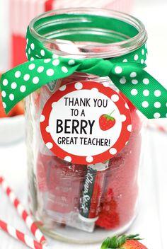 Berry Fun Teacher Ap