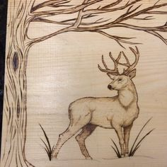 Almost done! #Pyrography #deer tree #buck #woodburning