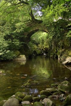 Lydia Bridge at home in Devon, used to swim in the allegedly bottomless pool here!