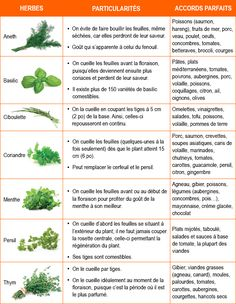 Fines herbes fraîches: comment et avec quoi? – 5 ingredients 15 minutes Intensely aromatic, fresh herbs are ideal for flavoring and enhancing the flavor of a host of dishes. Discover their secrets in order to integrate them as well as… Continue Reading → Holistic Nutrition, Kids Nutrition, Diet And Nutrition, Indian Food Recipes, Diet Recipes, Vegetarian Recipes, Healthy Recipes, Fresh Herbs, Cooking Tips