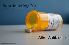 It is critical that gut flora and gut health are rebuilt after each round of antibiotics a person takes, since our immune system resides primarily in our gut, and is fully dependent on a healthy, diverse flora population.