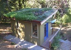 Tomales house in miniature sports green roof and car glass awning.
