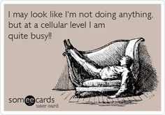 I may look like I'm not doing anything, but at a cellular level I am quite busy!!