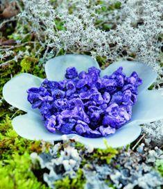 http://www.bluemarguerite.com/Loisirs-creatifs/tuto-4515-violette-cristallisee.deco