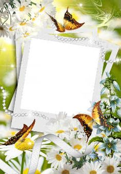 Processing photos online. Category: Spring