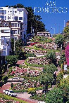 my favorite street in San Francisco, I could stare up at it all day and drive down it all day