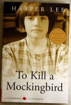 Scout, Jem, and Atticus in To Kill a Mockingbird.  My favorite of all time.