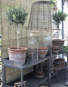 Vintage inspired display for garden potting shelf and terracotta pots. At Fleaing market in Paris, France Repinned by www.silver-and-grey.com
