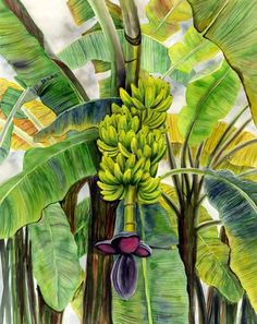 Coconut Palms & Banana Plants - Floravita Reverse Painted Glass ...