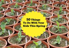 50 Things to Do this Spring with your Kids http://momgenerations.com/2014/04/50-things-to-do-this-spring-with-your-kids/
