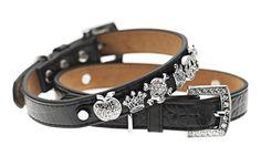 Black Velvet Collar Beautiful Leather Dog shop online now