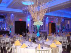Rent Starry Night themed Birch branches. Call 631-421-2286 Email info@sweet16candelabras.com