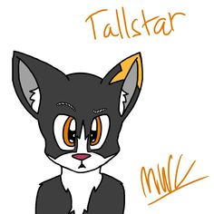 Tall star for the newest contest! Hope you like it!-MinecraftWarriorCat