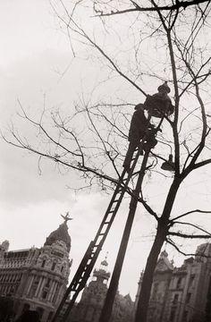 Madrid años 40: reparando una farola Diego González Ragel Madrid, c. 1940