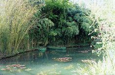 Monet's Garden 4   heather_lss   Flickr