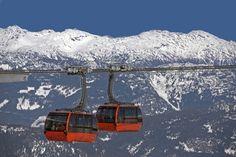 Take the peak-to-peak gondola ride and ski down the powder in Whistler Blackcomb. Banff National Park, National Parks, Peak To Peak, Sea To Sky Highway, America And Canada, North America, Round Trip, Whistler, Day Tours