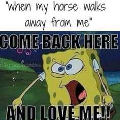 When my horse walks away from me - Horses Funny - Funny Horse Meme - - When my horse walks away from me The post When my horse walks away from me appeared first on Gag Dad. Funny Horse Memes, Funny Horses, Funny Animals, Funny Memes, Horse Humor, Equestrian Memes, Equestrian Problems, Horse Riding Quotes, Horse Quotes