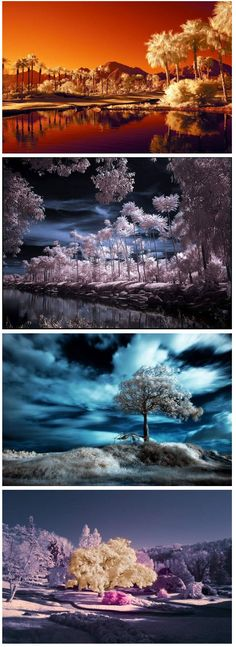 Impressive Infrared Photography - colors of the seasons Uv Photography, Infrared Photography, Concept Photography, Creative Photography, Amazing Photography, Landscape Photography, Pretty Pictures, Cool Photos, Beautiful Landscapes