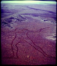"Australia boasts a geoglyph that's larger than Peru's ""Nazca Lines"" and England's ""White Horse"". Called the ""Marree Man"", the pictograph measures 4.2 km tall by 2 km wide and is etched into a plateau near Marree. It depicts an Aboriginal warrior throwing a hunting stick and is so large that it can be viewed fully only from the air. ""Marree Man"" was discovered by a charter pilot in 1998 and, despite being the world's largest geoglyph, its origin remains a mystery."