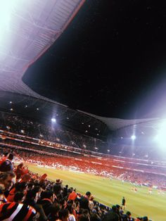 SLB🔴⚪🦅 Big Love, Football Players, True Love, Concert, Places, Sports, Club, Couples, Football