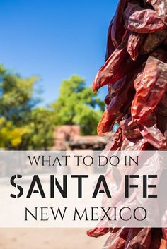 Everything you need to know for planning the perfect trip to Santa Fe, New Mexico, including where to stay, what to see, and how to get here!