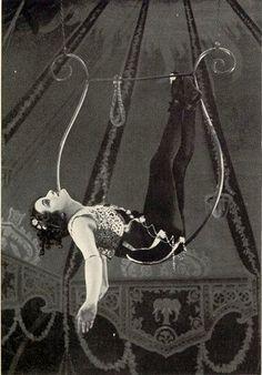 Bienvenue sur le Cirque de la Nuit