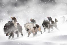 Rite of Fortitude - Wendigo, Niyati, Jjong by SkyOpium on DeviantArt Creature Drawings, Animal Drawings, Fantasy Creatures, Mythical Creatures, Cartoon Dog Drawing, Dog Armor, Werewolf Name, Wolf Rider, Wolf Artwork