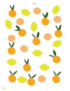 so inspired by citrus right now