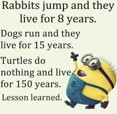 Rabbits jump & live for 8 years, dogs run & they live for 15 years Turtles do nothing & live 150 years, lesson learned.