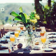Farm-To-Table in Fern's Garden!