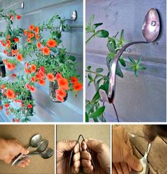 MYO Spoon Planter Hooks- check out lawn/yard sales this spring & grab heavy duty silverware for this project!