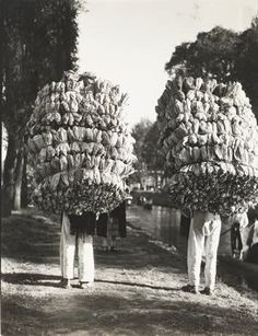 Tina Modotti, Loading bananas, Veracruz, 1927-29