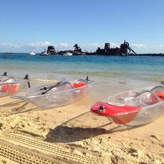 Let's hire these see through kayaks! Fraser Island Tourism