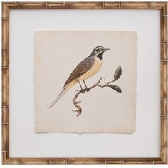 De Langlois Bird IV Wall Art (¥38,330) ❤ liked on Polyvore featuring home, home decor, wall art, mosaic wall art, tree branch centerpieces, branch centerpieces, bird wall art and branch wall art