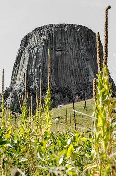 Devils Tower From Red Beds Trail by Debra Martz