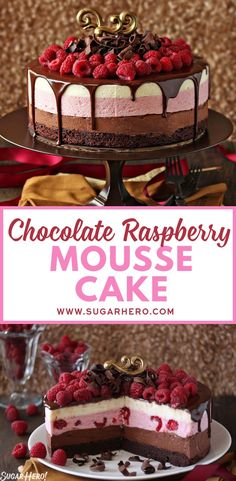 Chocolate Raspberry Mousse has a moist fudgy brownie base three layers of light moussechocolate raspberry and vanilla and then a glossy topping of chocolate and a tangle. Gourmet Recipes, Cake Recipes, Dessert Recipes, Gourmet Cakes, Gourmet Foods, Chocolate Raspberry Mousse Cake, Vanilla Mousse, Chocolate Cake With Raspberries, Gateaux Cake