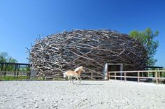 Designed by Prague-based studio SGL Projekt, in 2006, The Stork Farm Nest is a giant stick-covered dome used as a horse-riding arena in the Czech Republic.   The design was inspired by storks that found home in the roof of the distillery after it was disused.