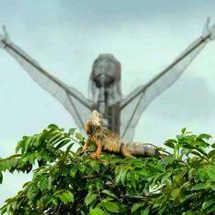 Colombia - Cristo petrolero e iguana, símbolos de Barrancabermeja, Santander.