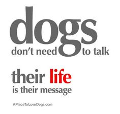 their life is their message • from  APlaceToLoveDogs.com • dog dogs puppy puppies cute doggy doggies adorable funny fun silly photography typography quotes