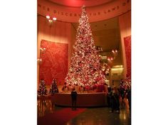 Google Image Result for http://cache.virtualtourist.com/4/4846040-45_Foot_Grand_Christmas_Tree_Chicago.jpg