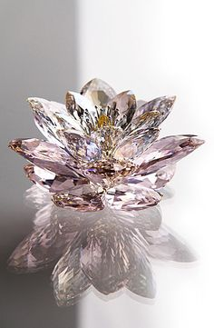 Swarovski Waterlily, Rosaline GEORGOUS CHRISTMAS PRESENT FOR ME THIS YEAR!!