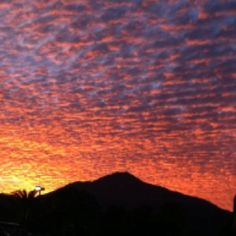 Mt. Tamalpais from Mill Valley, CA.  Photo by Beverly Thorman