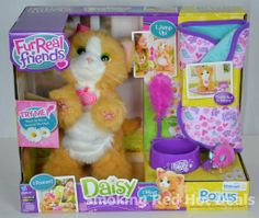 Furreal Friends Daisy Kitty Plays With Me BONUS Bed Bowl Mouse Toy Fur Real Cat