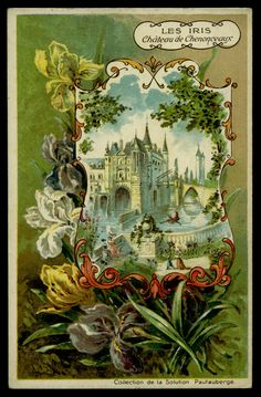 Pautauberge Lung Solution ~ Flowers c1900 ~ a mixture of French & Spanish backs