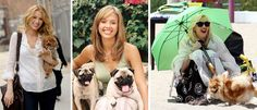 Grandes celebridades con perros pequeños